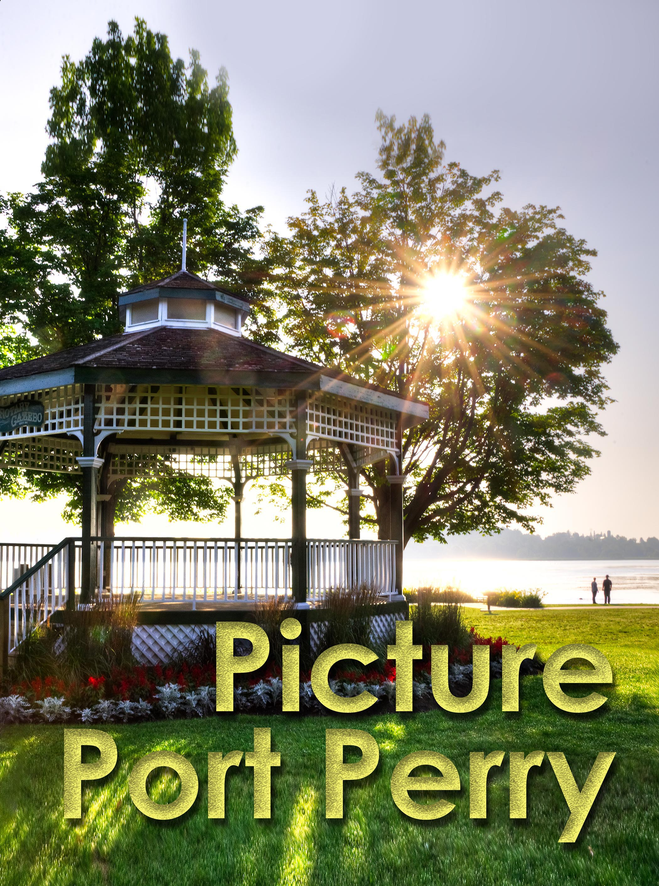 Picture Port Perry Opening Reception