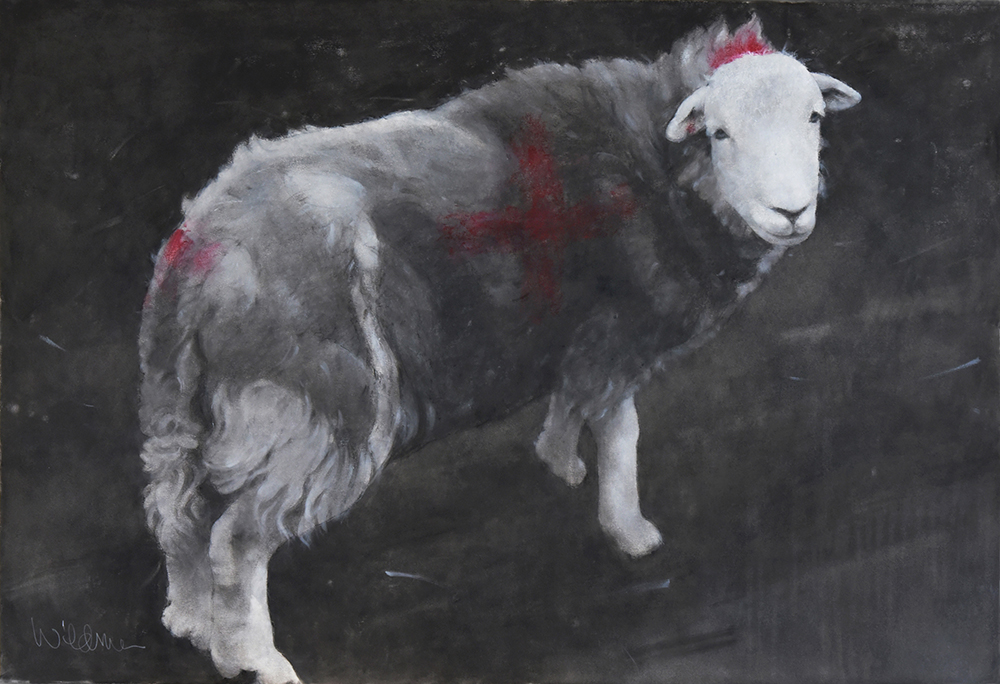 Sally Wildman Viking Sheep