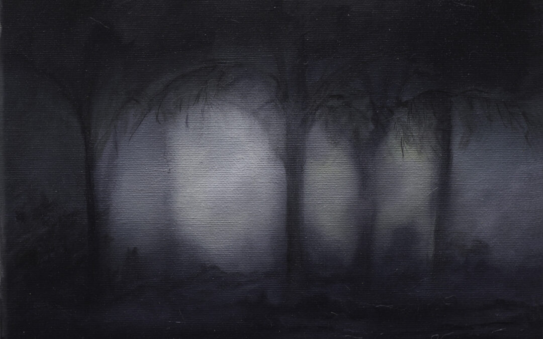 Watersheds; Shadows and Light by Lorelei Lapp